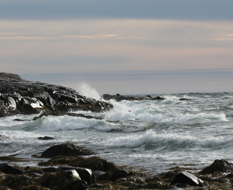 ri-smith-lobster-nova-scotia-seascape-1